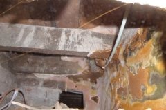 dry rot affecting joists and fruiting bodie on wall